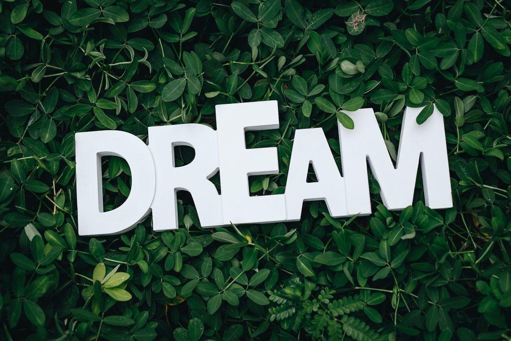 groei-mindset-droom