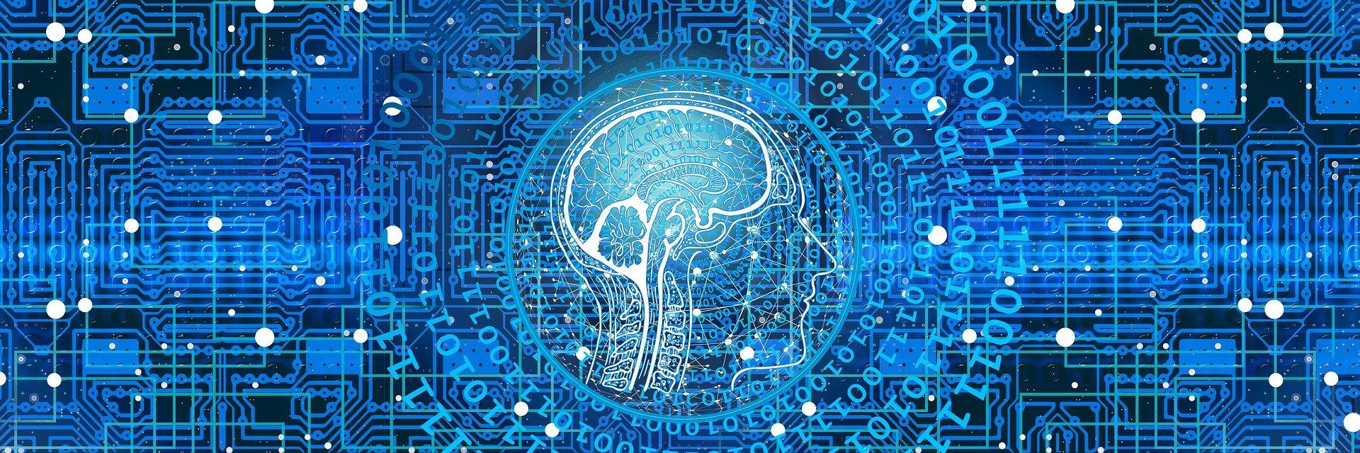 Impulsen-beheersen-hersenen